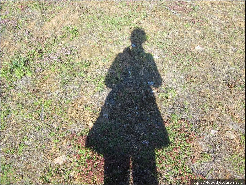 Моя тень солнечным утром=)))