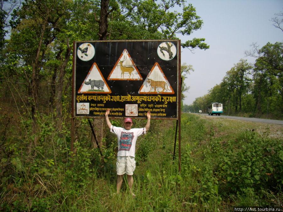 Оригинальный дорожный знак. Внимание: на дороге змеи, носороги и тигры!!!