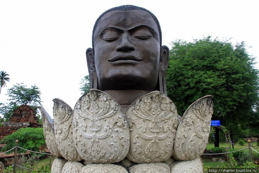 Голова,  Ват Тхаммикарат