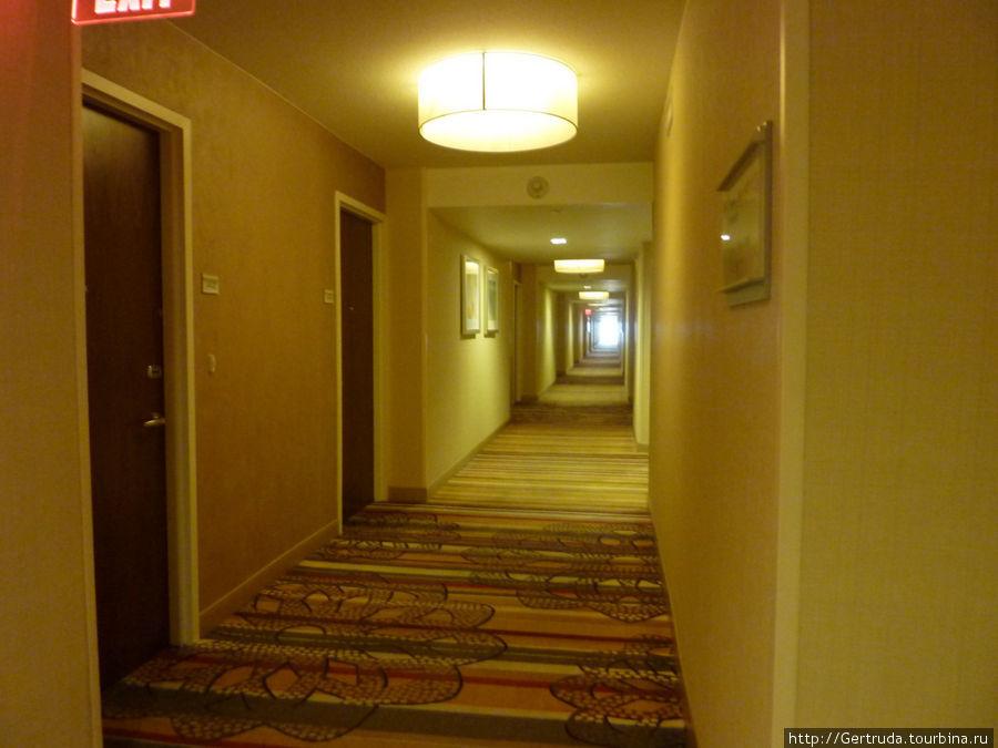 Коридор 14 этажа