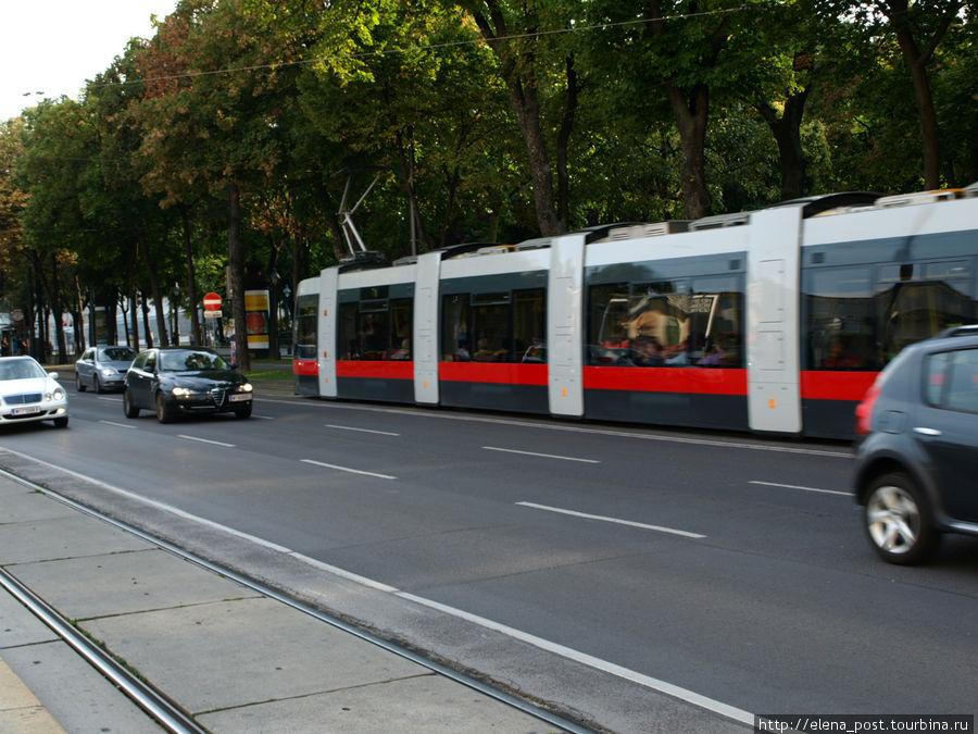 современный венский трамвай