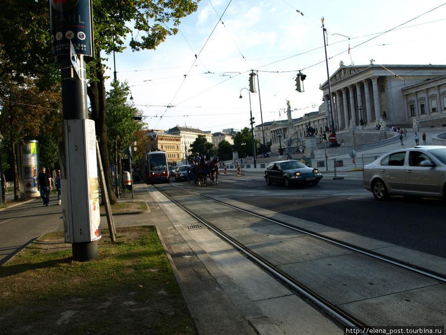 в центре Вены часто можно наблюдать такую картину: рядом с современным транспортом едет карета. На таких каретах катают туристов с обзорной экскурсией по центру Вены.