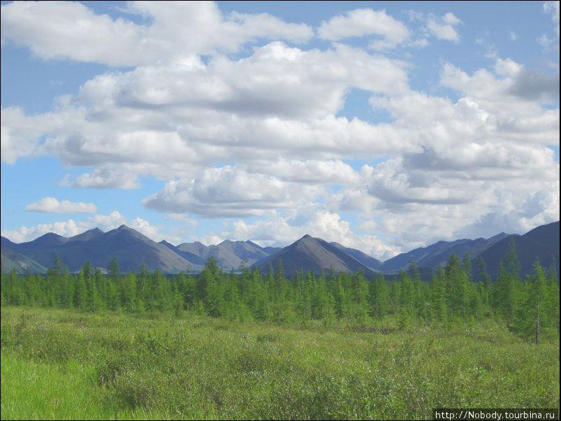 Природа Колымы... без дорог и мостов. Индигирка — Кон-юрях Саха (Якутия), Россия