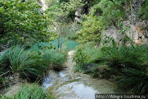 И далее от самого высокого водопада поток несется вниз.. от заводи к заводи...