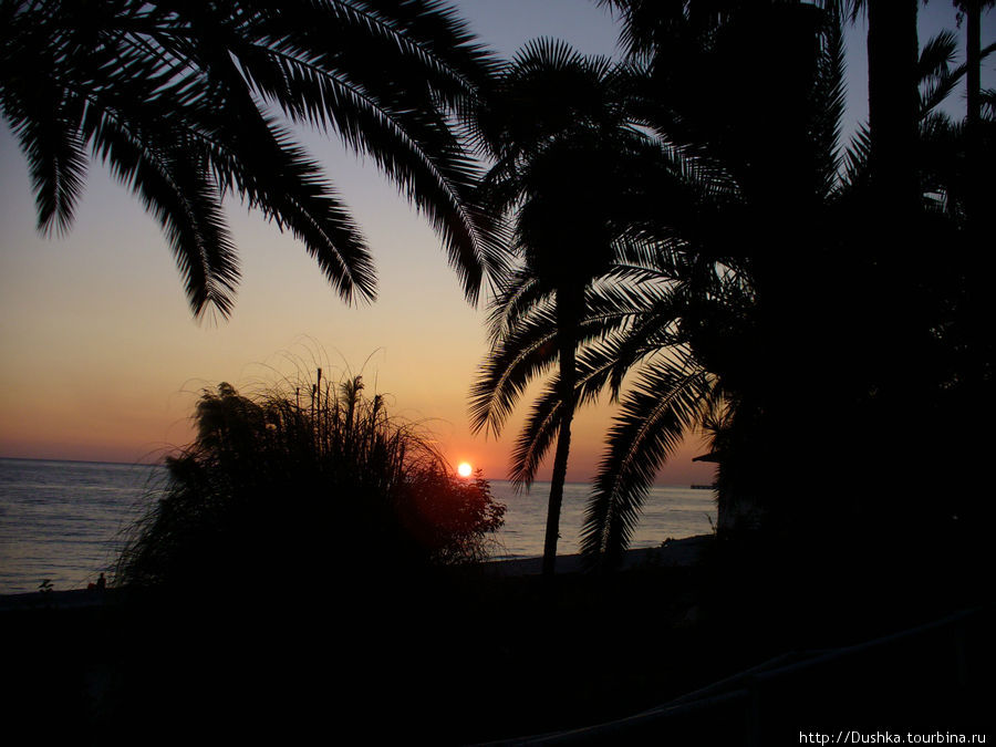 Закат.Гагры.2009г.