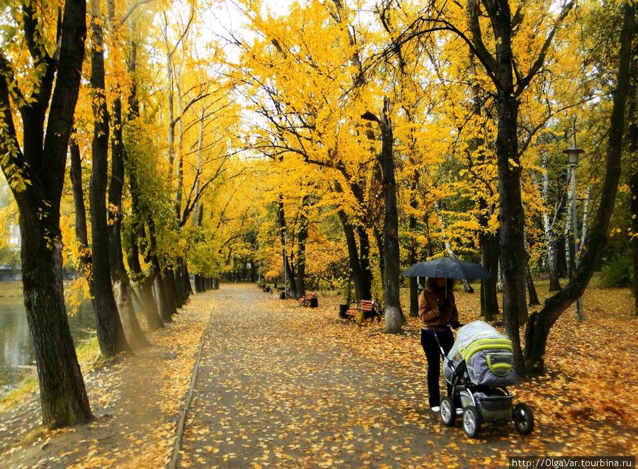 Парк при особняке Харитон