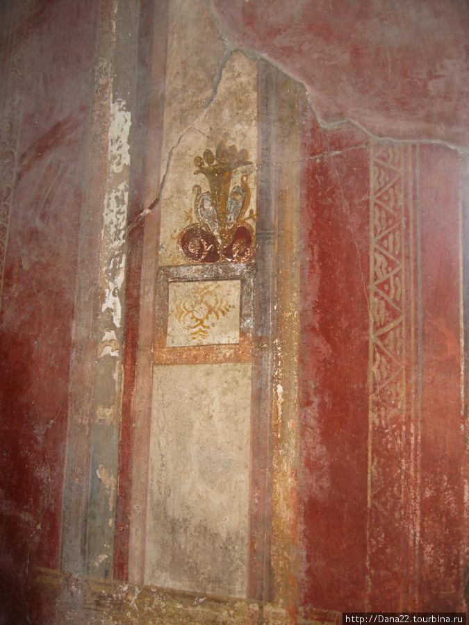 Фрески в доме торговца шерстью