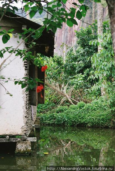 домик над водой в деревне
