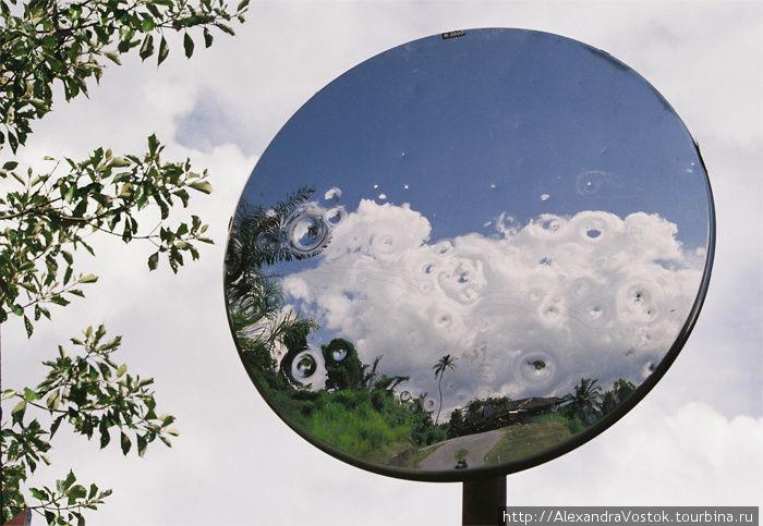 отражение в дорожном зерк