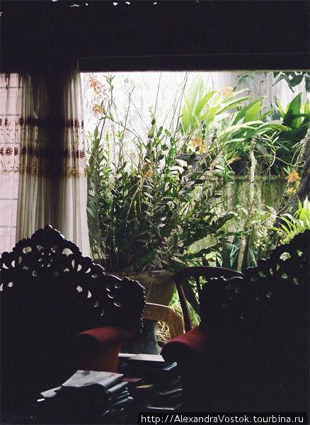 Как меня приютили в Индонезии (ч.1) Букиттинги, Индонезия