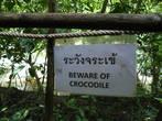 Крокодила мы так и не нашли...а может быть и к лучшему.... :)
