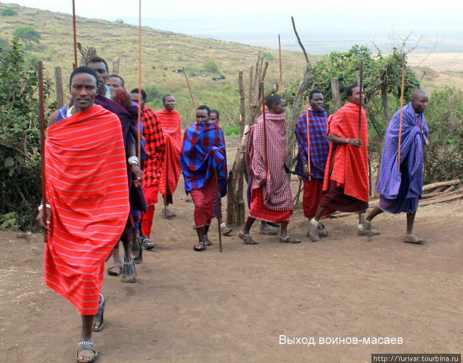 Выход воинов-масаев