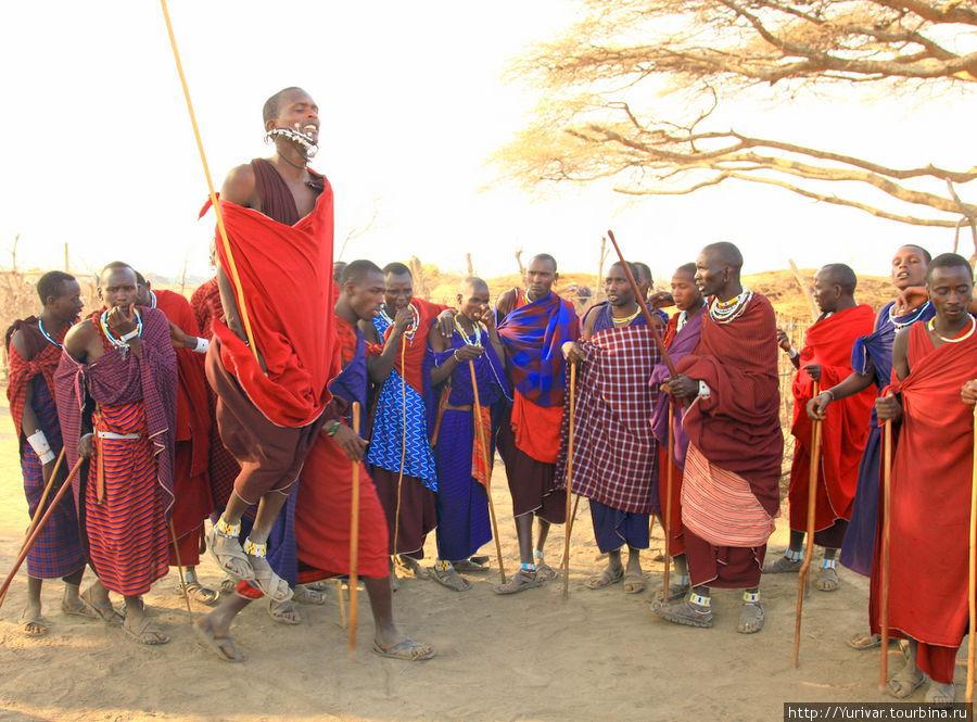 Танцы масайских воинов
