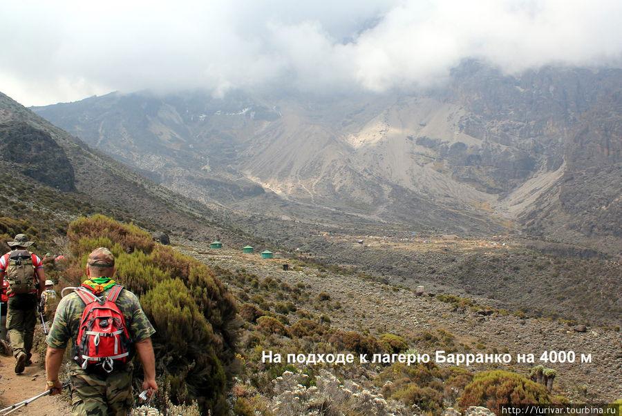 На подходе к лагерю Барранко на 4000 м.