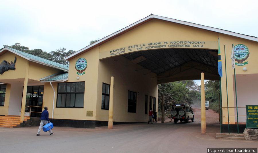 Ворота в Ногоронгоро и Серенгети