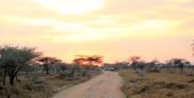 Восход солнца в Серенгети
