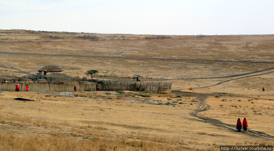 ММасайская деревня