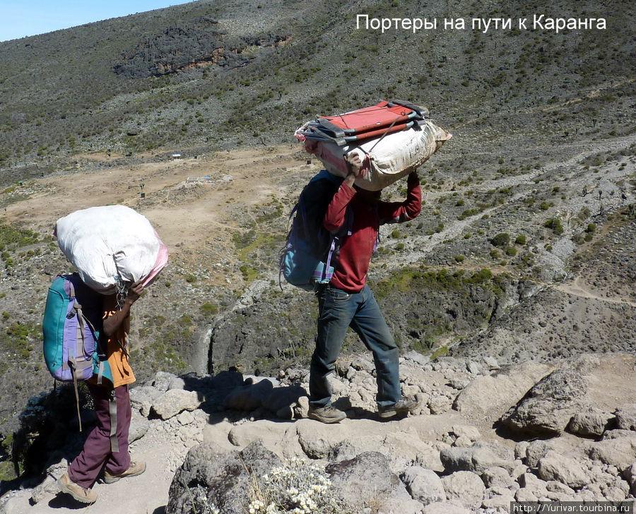 Портеры на тропе к Каранг