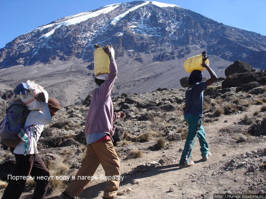 Портеры несут воду в Барафу