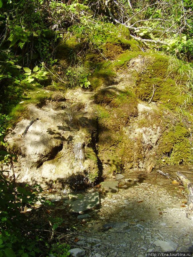 Экскурсия на Пшадские водопады. Ущелье