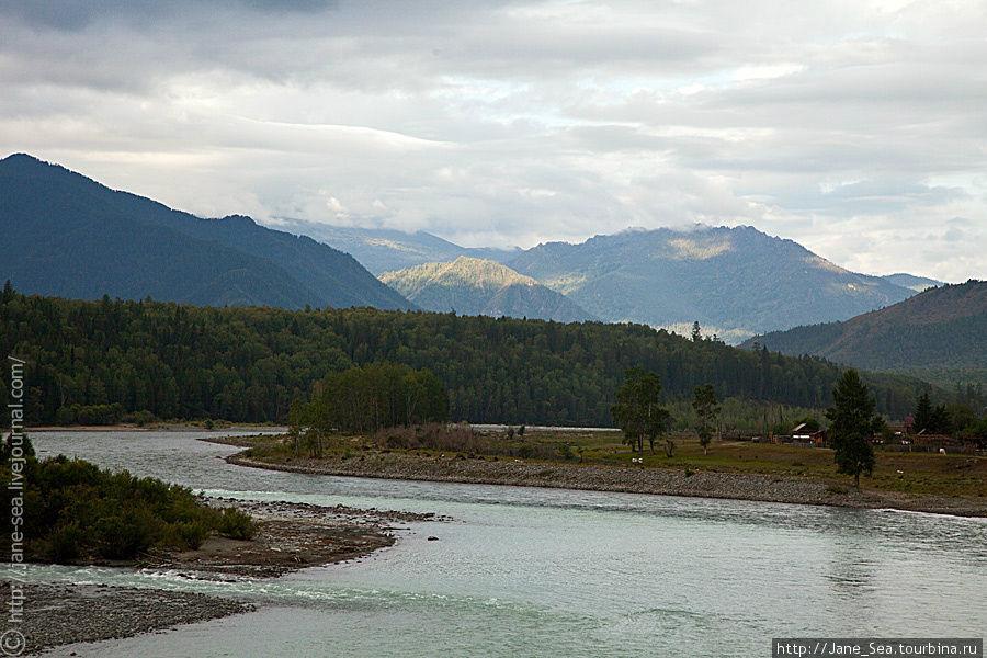 место впадения Кучерлы в Катунь