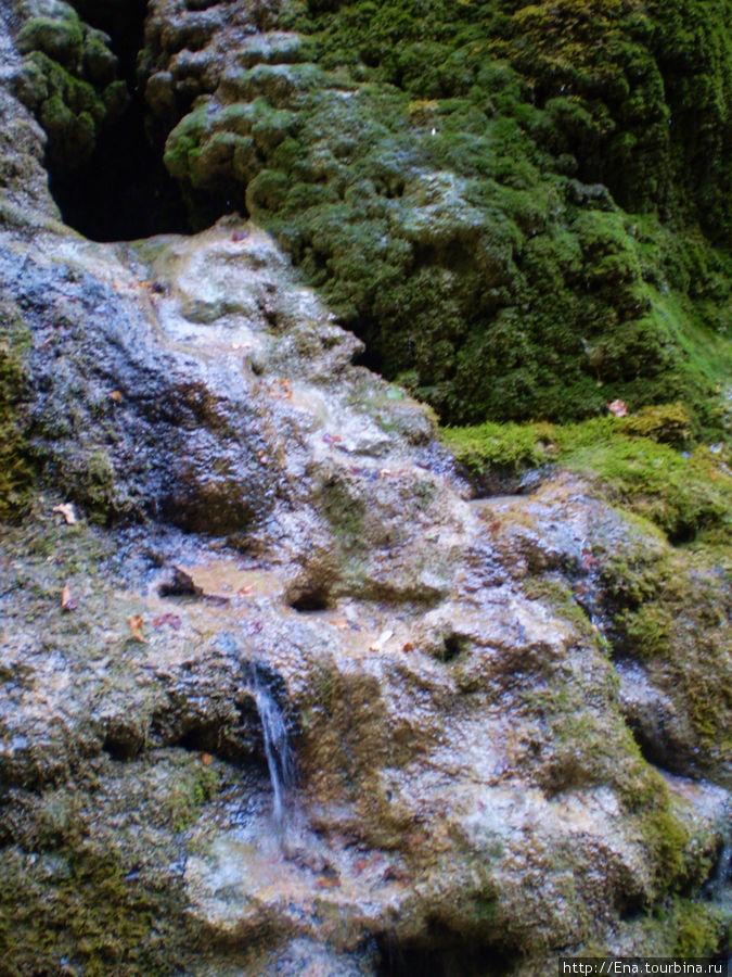 Экскурсия на Пшадские водопады. Водопадик малый