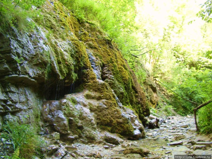 Экскурсия на Пшадские водопады. В ущелье