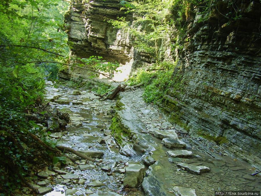 Экскурсия на Пшадские водопады. Тропою девственной природы