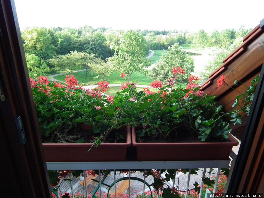 Красиво! Приятно утром проснуться и подойти к окну, когда там такой вид за окном!