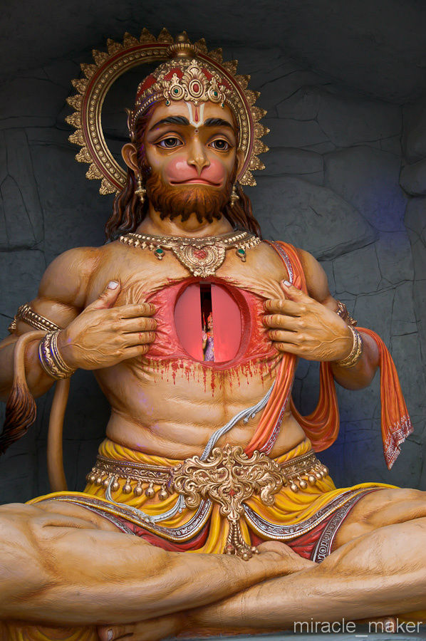 большие индийские груди-гц1