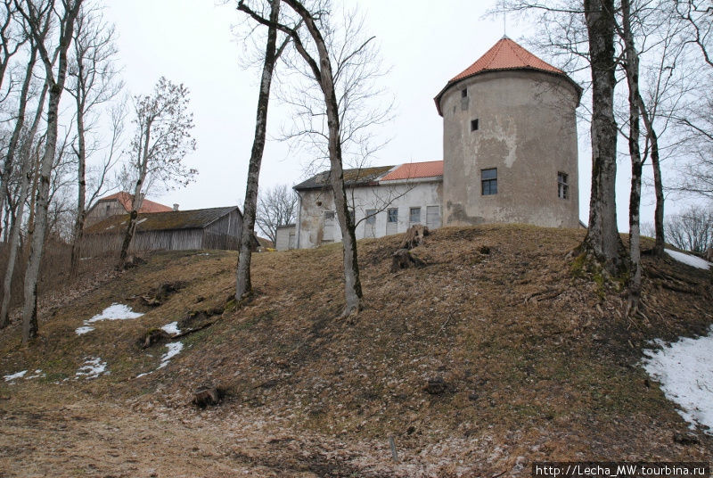 Алсунгский замок