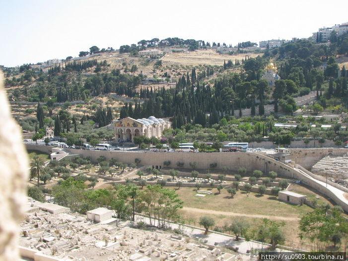 Церковь Всех Наций, слева