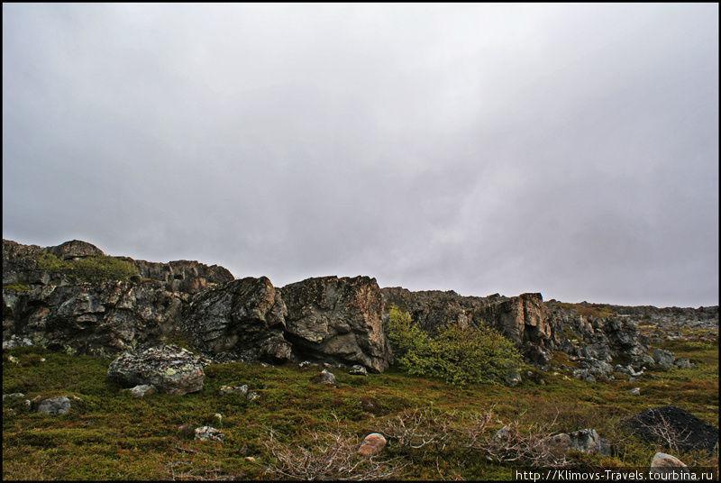 Камни и мхи
