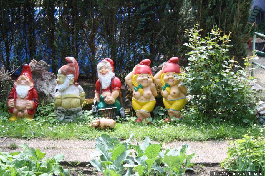 Совершенно фривольные садовые гномики