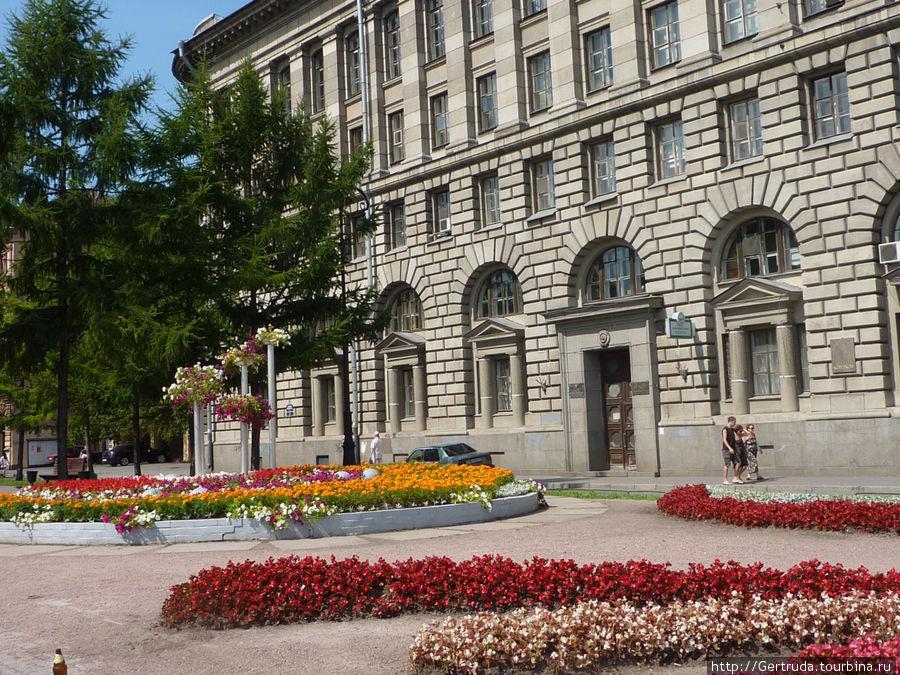 Цветы перед зданием института  ВМТ