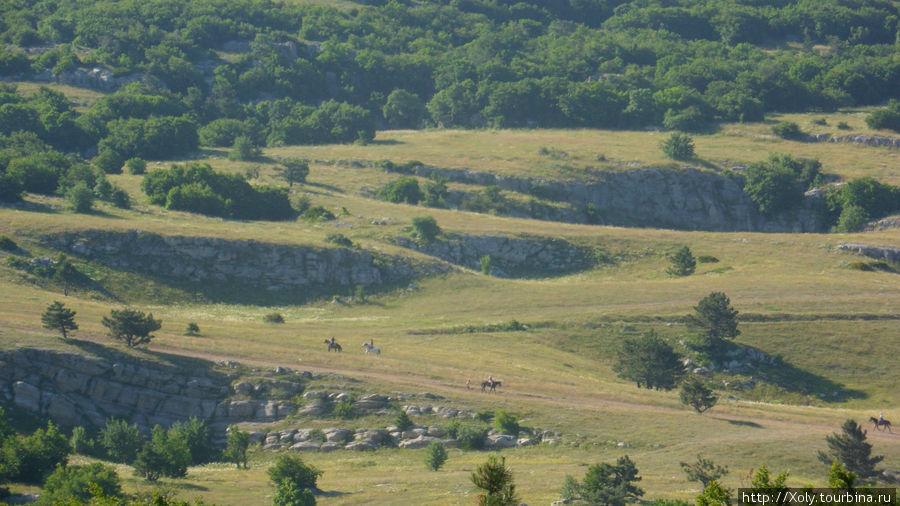 Вид с вершины на плато.