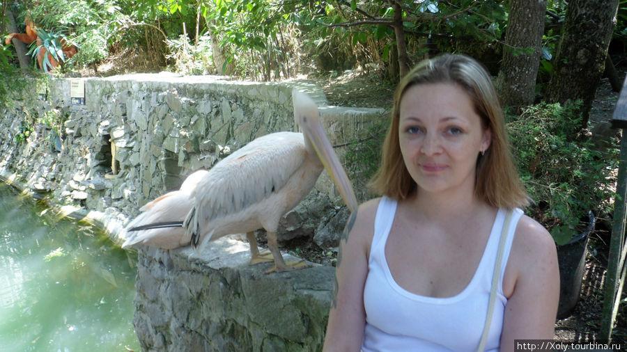 Вот эта розовая длинноклювая бестия пыталась меня за плечо по-надкусать )))