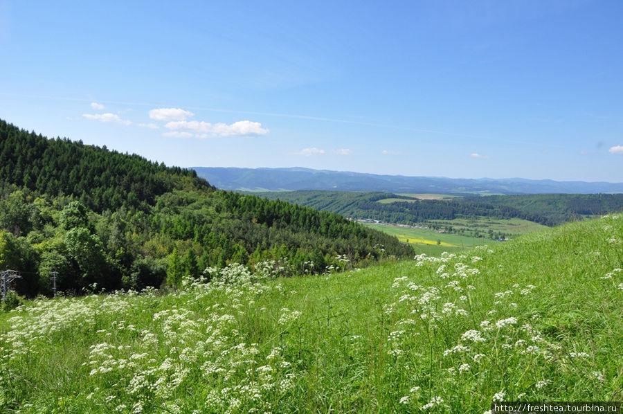 Первая половина лета — один из самых колоритных сезонов в Спише: луга цветут, в лесах ароматно