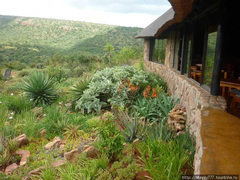 Iketla Lodge. Другие фотографии оттуда — в части 1.
