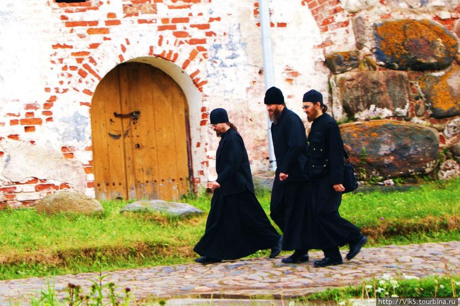 Обитатели монастыря.