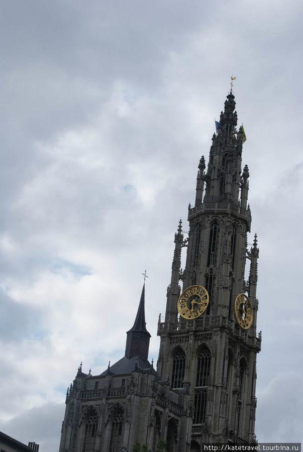 Собор Антверпенской Богом