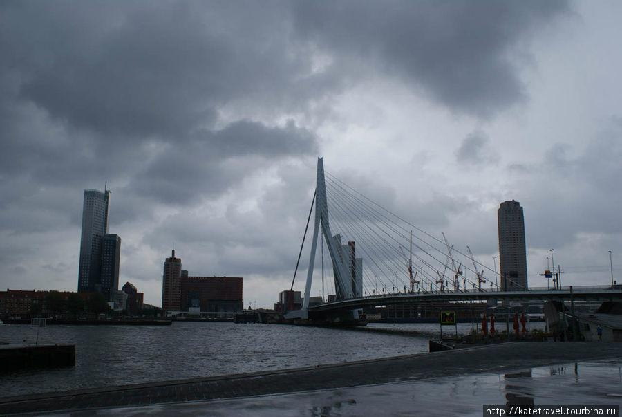Мост Эразма (Erasmusbrug)