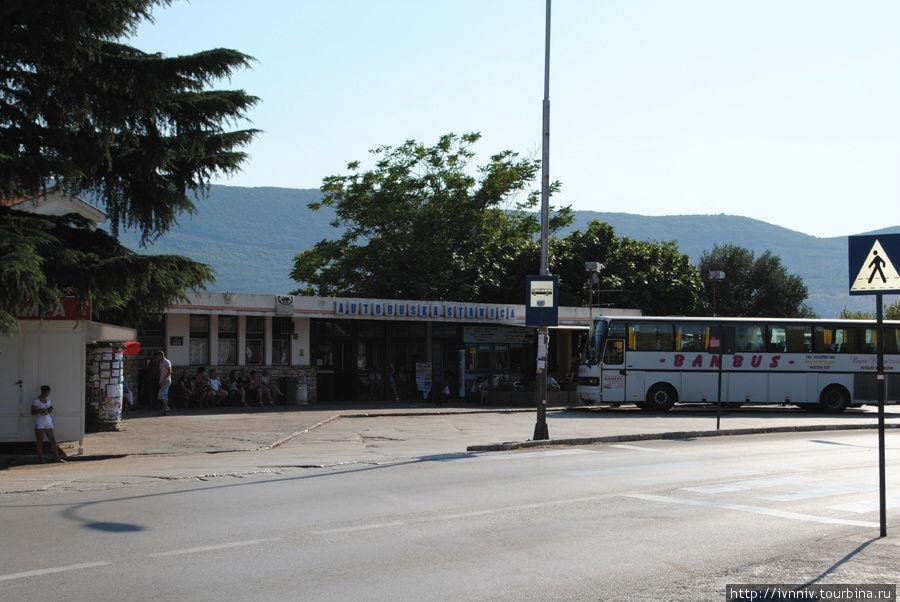 автостанция в Херцег-Нови