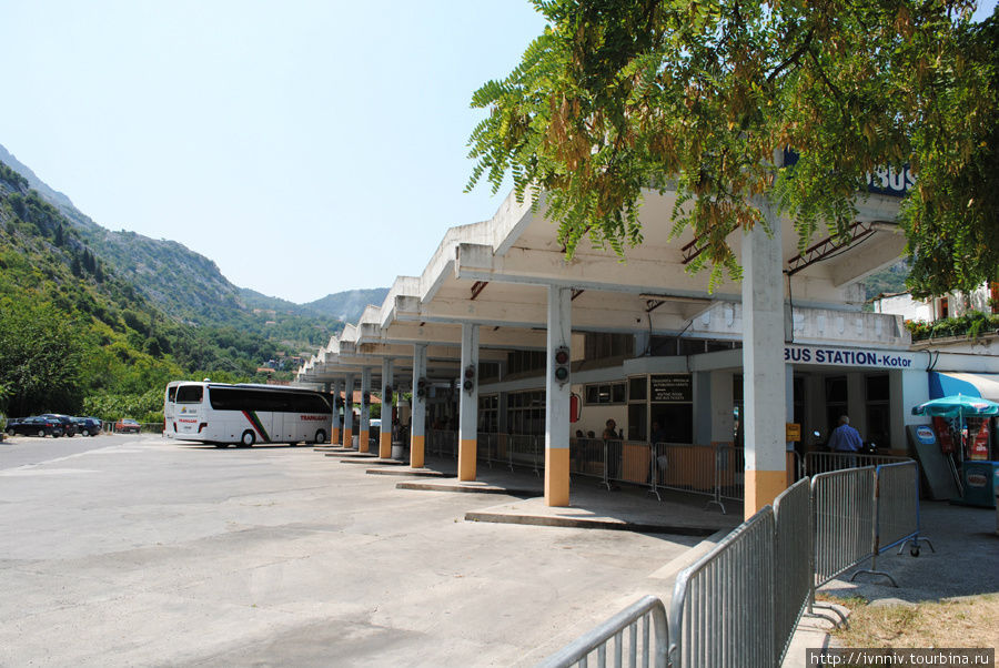 автостанция в Которе
