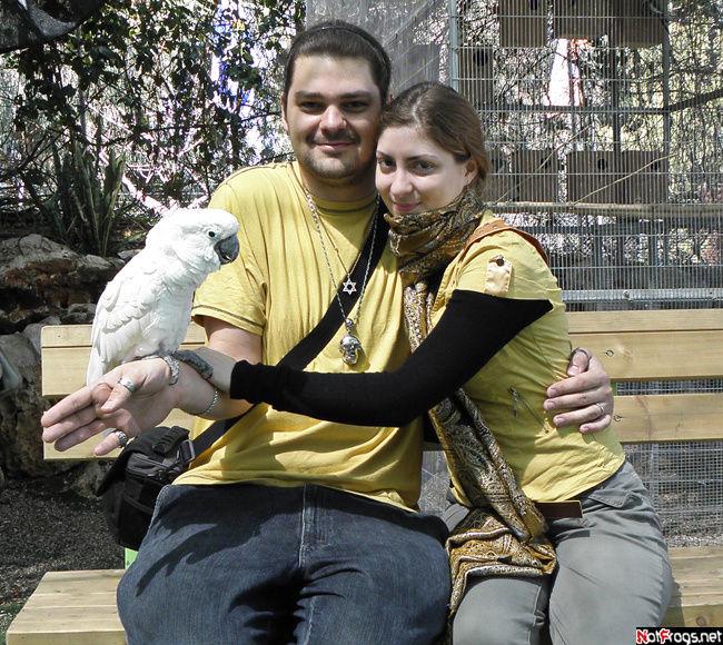 Те же и попугай