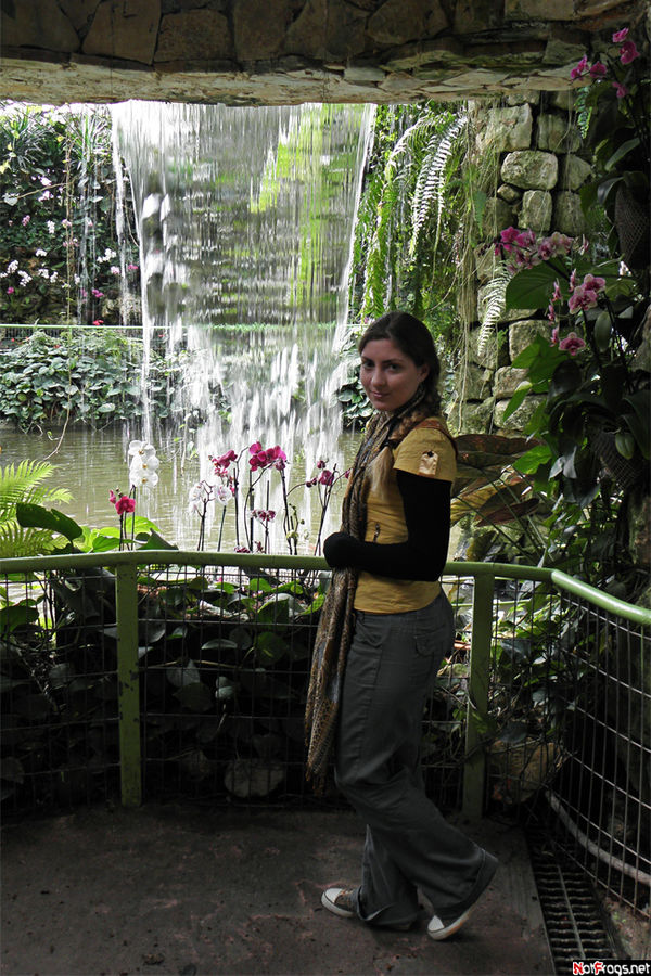 Цветочки у водопада