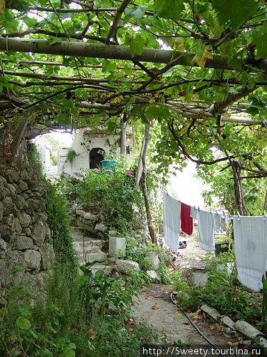 частный дворик деревушка Пикрис