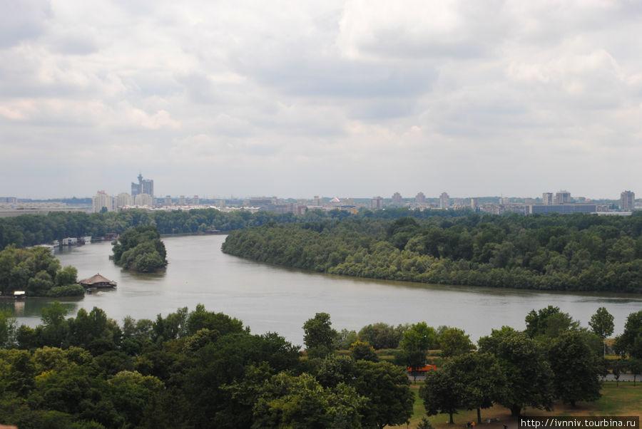 слияние Саввы и Дуная