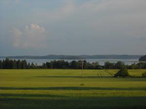 Поля, леса и озёра — вот она, Финляндия
