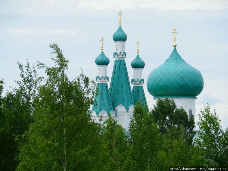 Купола Троицкого собора и звонницы